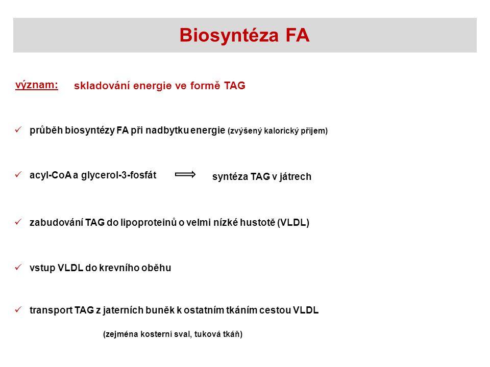 význam: skladování energie ve formě TAG acyl-CoA a glycerol-3-fosfát zabudování TAG do lipoproteinů o velmi nízké hustotě (VLDL) vstup VLDL do krevníh
