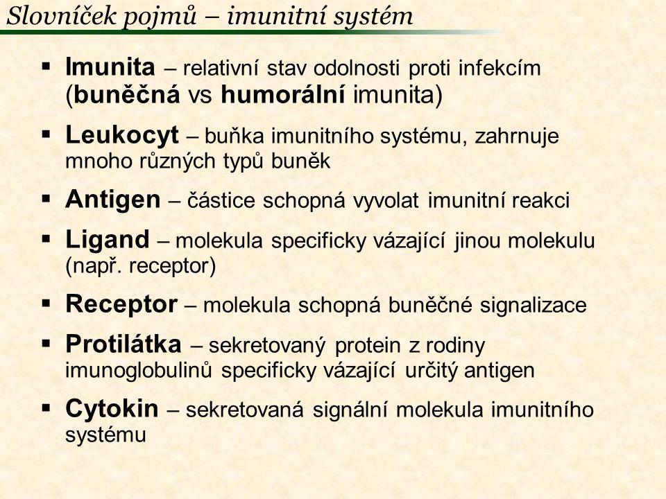 Primární imunologické orgány  Kostní dřeň  Thymus  Fabriciova bursa (ptáci) Sekundární imunologické orgány  Lymfatické uzliny (savci)  Slezina  Peyerovy plaky  mandle  Apendix / caekální tonsily  Meckelovo divertikulum (ptáci)  Harderova žláza (ptáci) Imunitní systém – orgány (obratlovci)