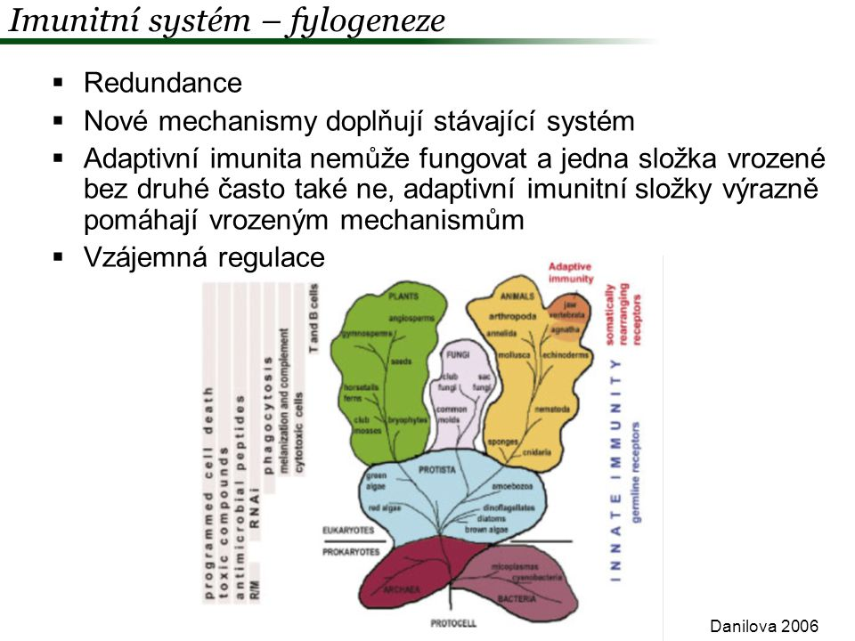 Ekologická imunologie