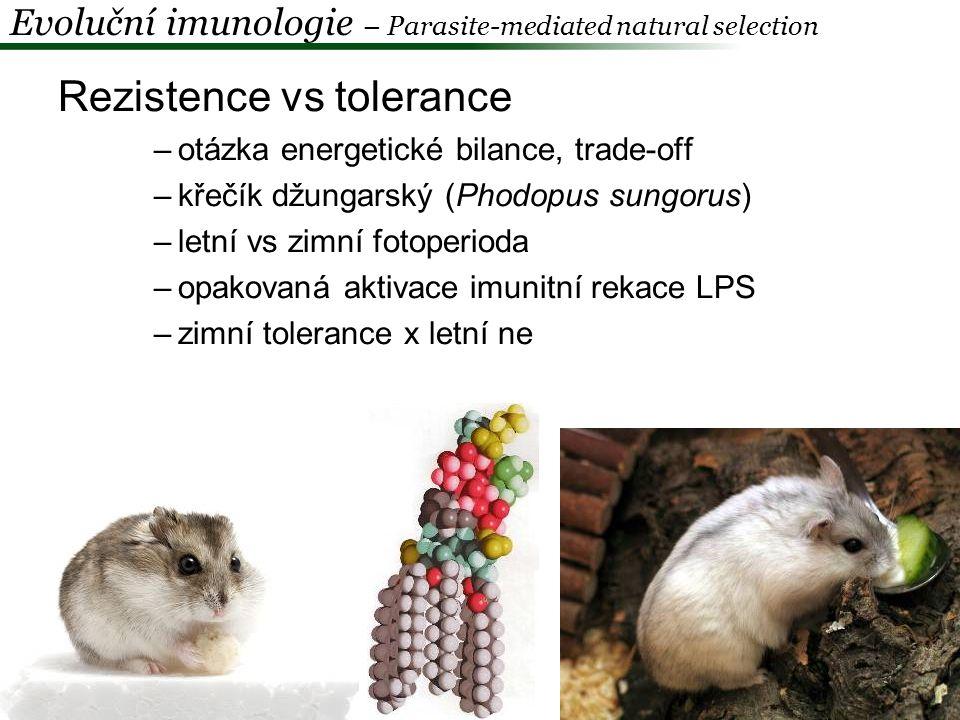 Rezistence vs tolerance TLR4: alely Asp299Gly a Thr399Ile > 60 000 let Asp299Gly – silně prozánětlivý fenotyp (TNF-α) nižší mortalita v důsledku malárie x vyšší riziko septického šoku (G - bakteriální infekce) vysoká prevalence Asp299Gly v subsaharské Africe nízká v Eurasii – tam Asp299Gly/Thr399Ile (neutralizace - sepse) Evoluční imunologie – modely koevoluce H-P Ferwerda et al.