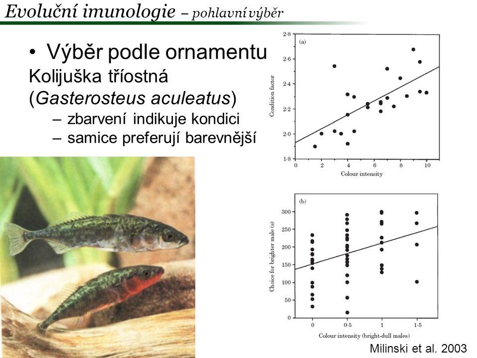"""""""Good genes a ornamentace –Hamilton & Zuk 1982 –Matching alleles – dědičná rezistence ke konkrétními druhu / kmenu parazita –parazit významně snižuje fitness hostitele –exprese ornamentu je závislá na zdraví / kondici –samičí preference k nejvyšší míře exprese ornamentu vede k selekci na rezistenci proti nejrozšířenějšímu parazitovi –cyklická, frekvenčně závislá selekce Evoluční imunologie – pohlavní výběr Hostitel Parazit H1 H2 P1 P2 H1H2 H1 P1P2"""