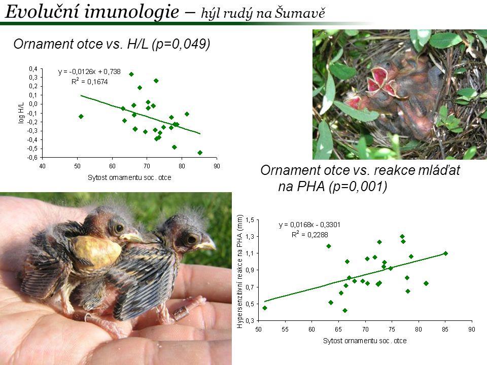 """Výsledky""""Dobré geny """"Komplementární geny Samčí ornament indikuje zdravotní stav +- Samčí ornament nereflektuje heterozygotnost +- Samčí ornament predikuje kvalitu mláďat ve vlastním hnízdě +- Příbuznost rodičů není určující pro kvalitu mláďat +- EPP je asociována s ornamentací samce +- Žádný rozdíl mezi WPY a EPY v imunologické odpovídavosti -- Žádný rozdíl mezi EPY a WPY v heterozygotnosti +- Evoluční imunologie – hýl rudý na Šumavě Albrecht et al."""