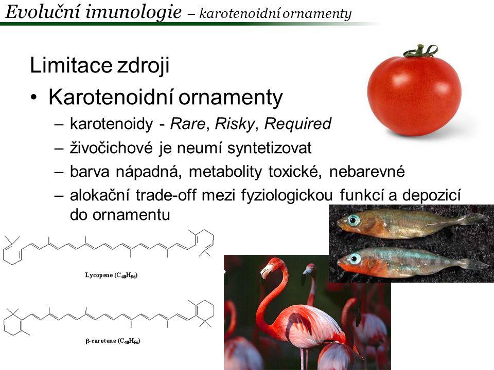 Karotenoidní ornamenty Hýl mexický (Carpodacus mexicanus) –barva je dána karotenoidy přijímanými v potravě –samice preferují červenější samce Hill 1990, 1992