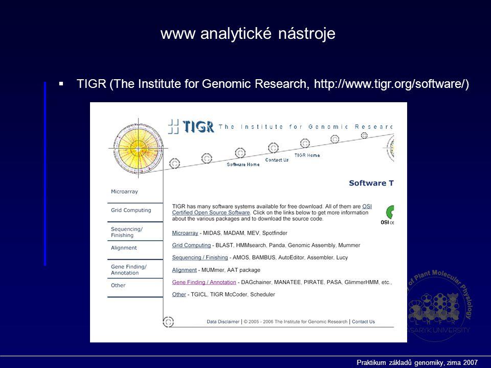 Praktikum základů genomiky, zima 2007 www analytické nástroje  TIGR (The Institute for Genomic Research, http://www.tigr.org/software/)