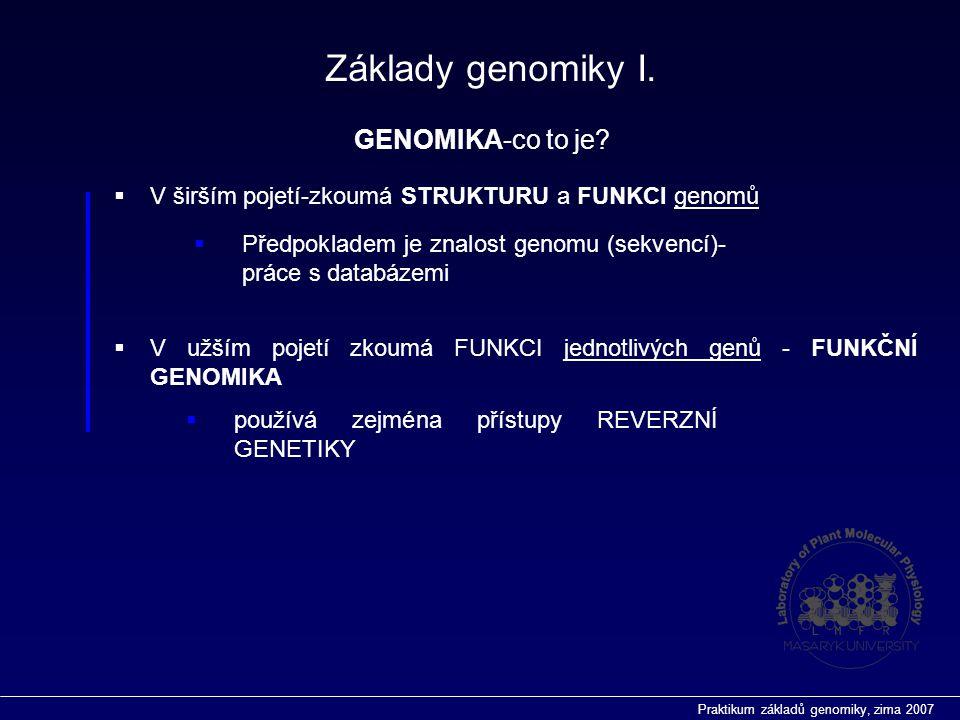Praktikum základů genomiky, zima 2007  V širším pojetí-zkoumá STRUKTURU a FUNKCI genomů Základy genomiky I.