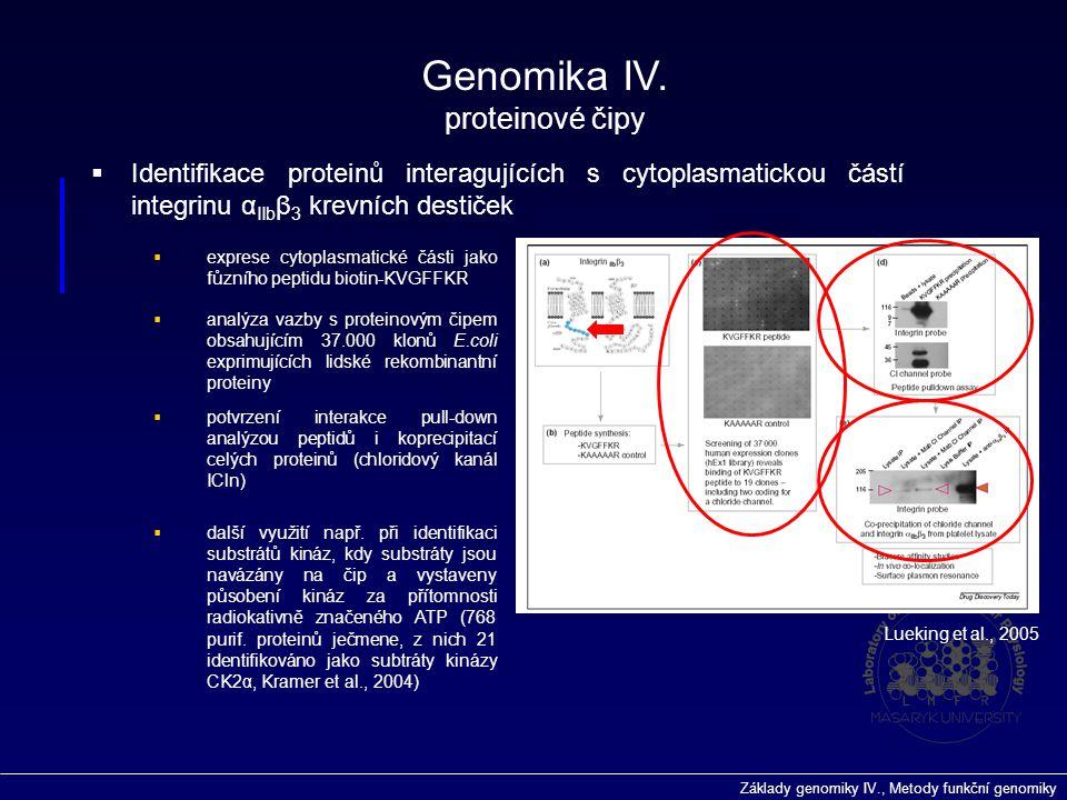 Základy genomiky IV., Metody funkční genomiky  Identifikace proteinů interagujících s cytoplasmatickou částí integrinu α IIb β 3 krevních destiček 