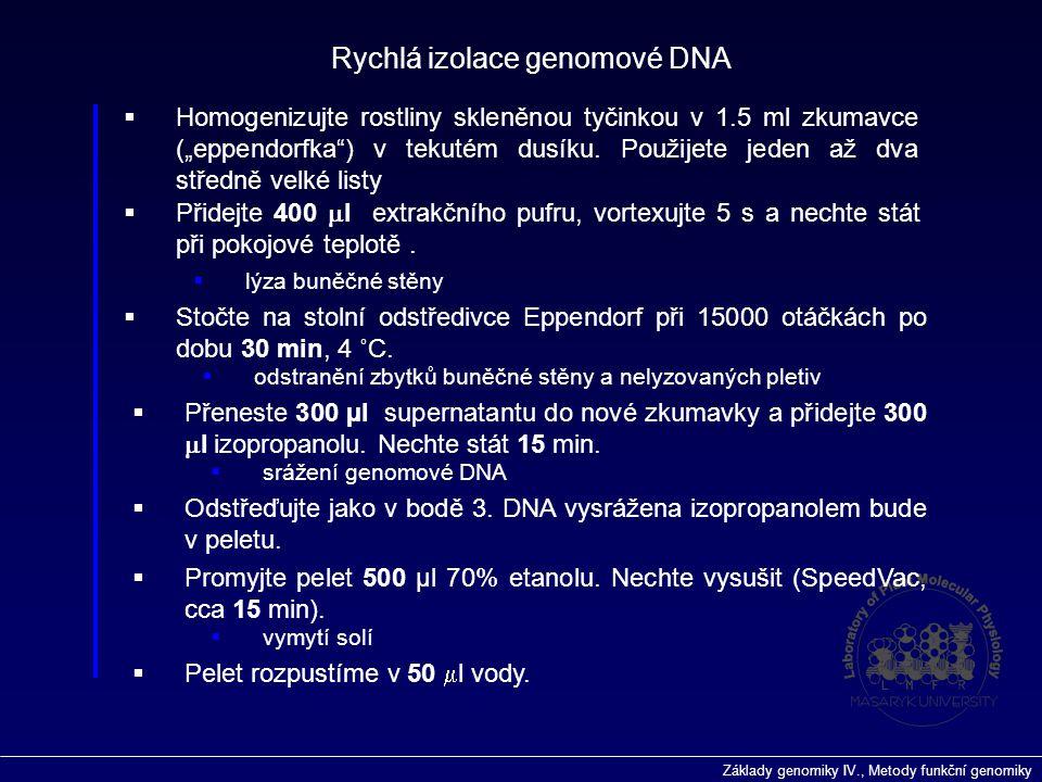 Základy genomiky IV., Metody funkční genomiky  Přidejte 400  l extrakčního pufru, vortexujte 5 s a nechte stát při pokojové teplotě.  Stočte na sto