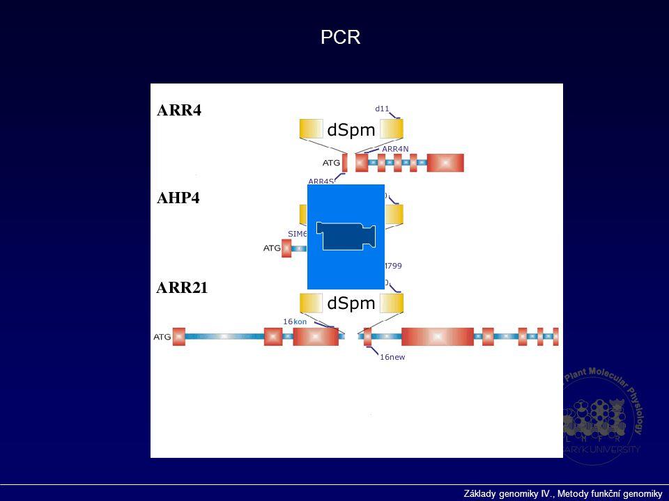 Základy genomiky IV., Metody funkční genomiky PCR