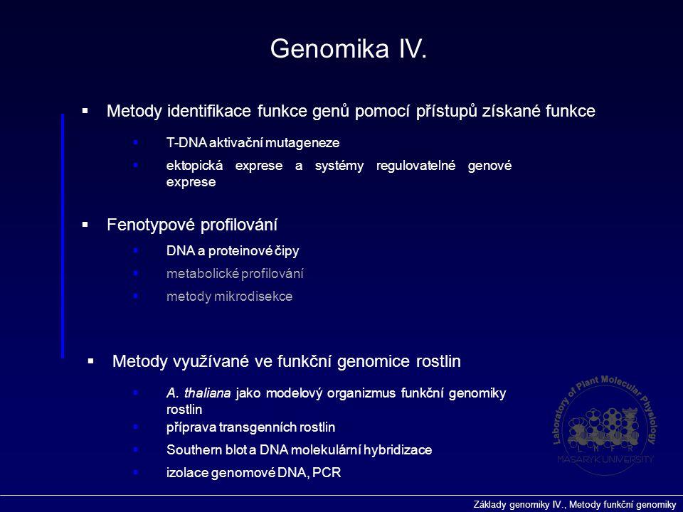 Základy genomiky IV., Metody funkční genomiky  Fenotypové profilování Genomika IV.  metabolické profilování  DNA a proteinové čipy  Metody identif