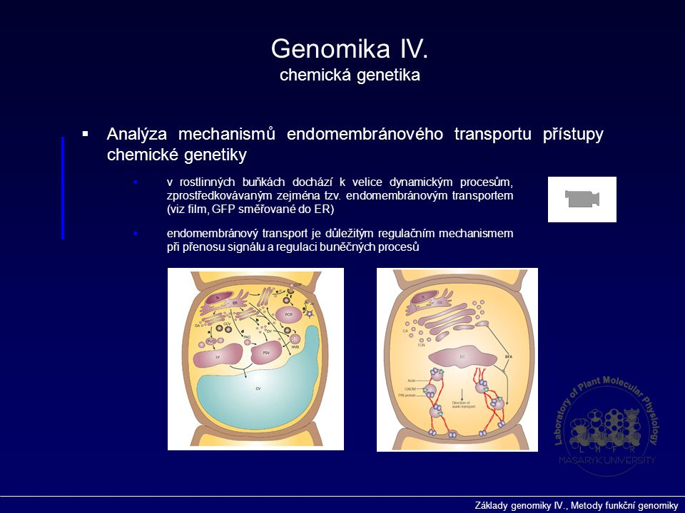 Základy genomiky IV., Metody funkční genomiky Genomika IV. chemická genetika  Analýza mechanismů endomembránového transportu přístupy chemické geneti