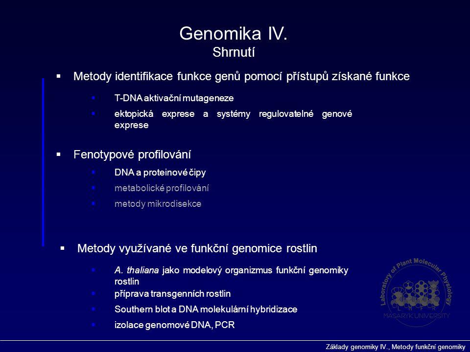Základy genomiky IV., Metody funkční genomiky  Fenotypové profilování  metabolické profilování  DNA a proteinové čipy  Metody identifikace funkce