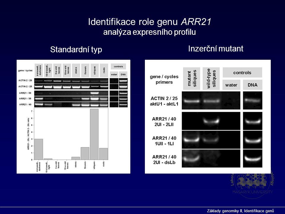 Základy genomiky II, Identifikace genů Identifikace role genu ARR21 analýza expresního profilu Standardní typ Inzerční mutant