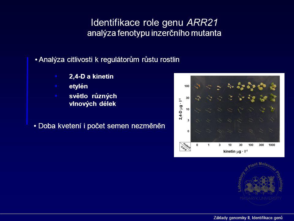 Základy genomiky II, Identifikace genů Identifikace role genu ARR21 analýza fenotypu inzerčního mutanta Analýza citlivosti k regulátorům růstu rostlin