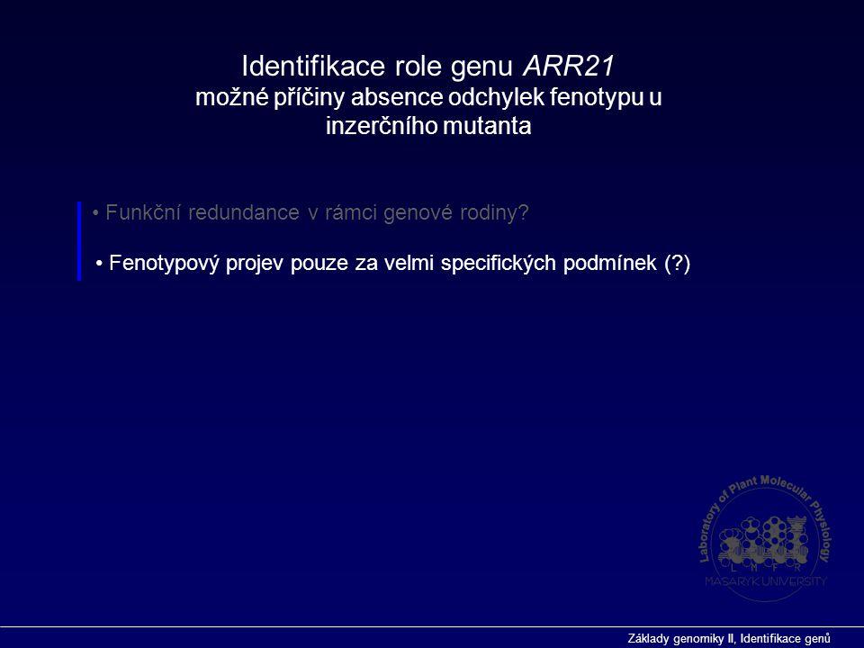 Základy genomiky II, Identifikace genů Identifikace role genu ARR21 možné příčiny absence odchylek fenotypu u inzerčního mutanta Funkční redundance v