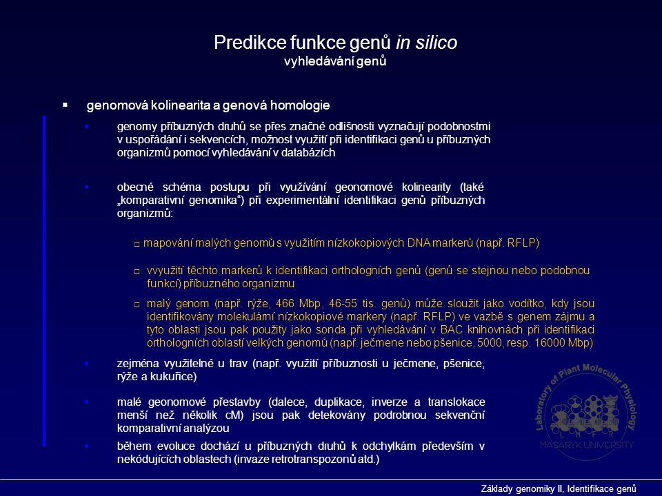 Základy genomiky II, Identifikace genů  genomová kolinearita a genová homologie Predikce funkce genů in silico vyhledávání genů  genomy příbuzných d
