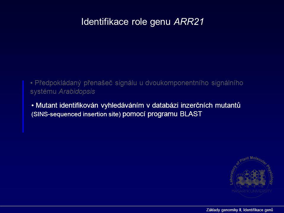 Základy genomiky II, Identifikace genů  vyhledávání genů ab inicio Predikce funkce genů in silico vyhledávání genů  programy pro genové modelování  Genescan (http://genes.mit.edu/GENSCAN.html)http://genes.mit.edu/GENSCAN.html velice dobrý pro predikci exonů v kódujích oblastech (testováno na genu PDR9, identifikoval všech 23 (!) exonů  GeneMark.hmm (http://opal.biology.gatech.edu/GeneMark/)http://opal.biology.gatech.edu/GeneMark/  zohledňují také další parametry, např.