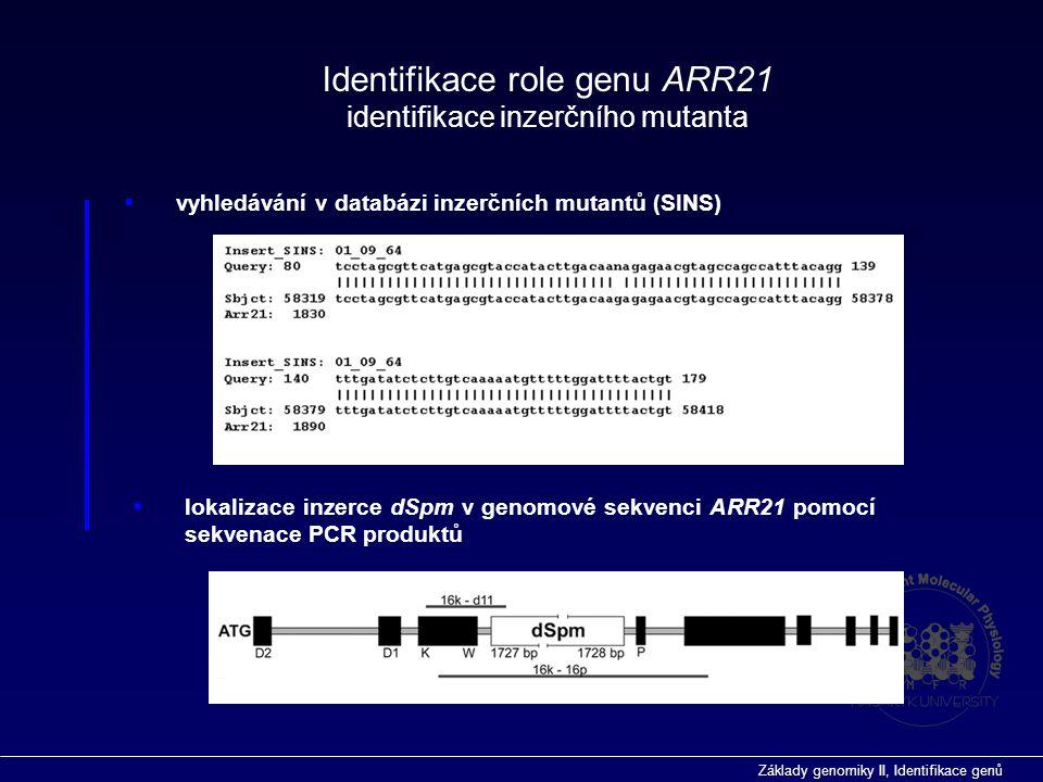 Základy genomiky II, Identifikace genů Předpokládaný přenašeč signálu u dvoukomponentního signálního systému Arabidopsis Identifikace role genu ARR21 Mutant identifikován vyhledáváním v databázi inzerčních mutantů (SINS-sequenced insertion site) pomocí programu BLAST Exprese ARR21 u standardního typu a Inhibice exprese u inzerčního mutanta potvrzena na úrovni RNA