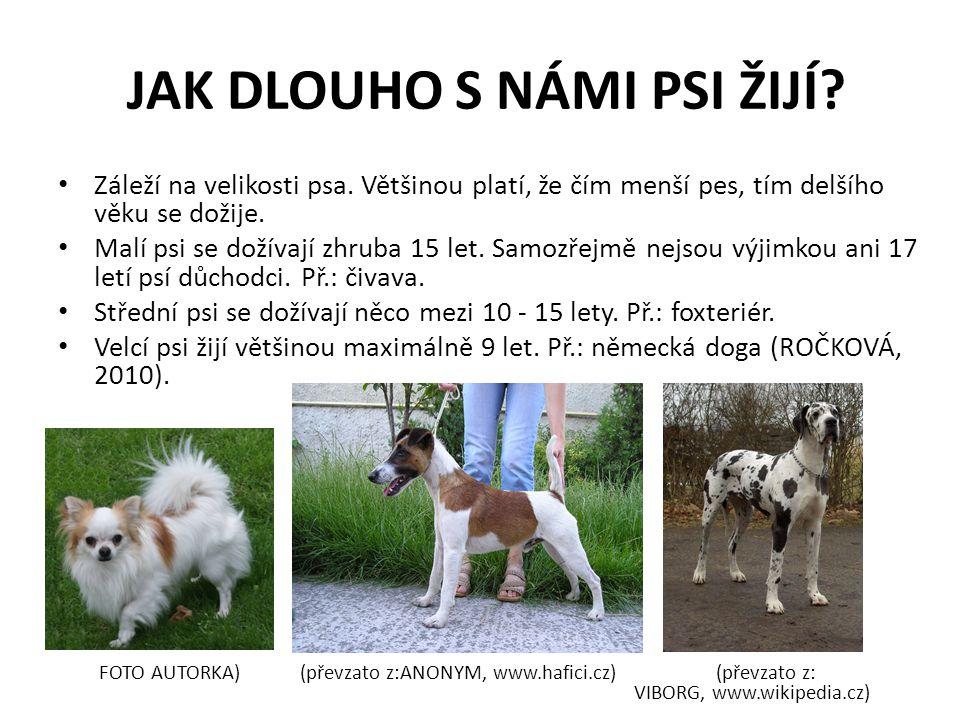 JAKÉ JSOU FUNKCE PSA? (převzato z: ANONYM, www.kockapes.cz) (převzato z: NĚMEČEK, www.mkuh.cz)
