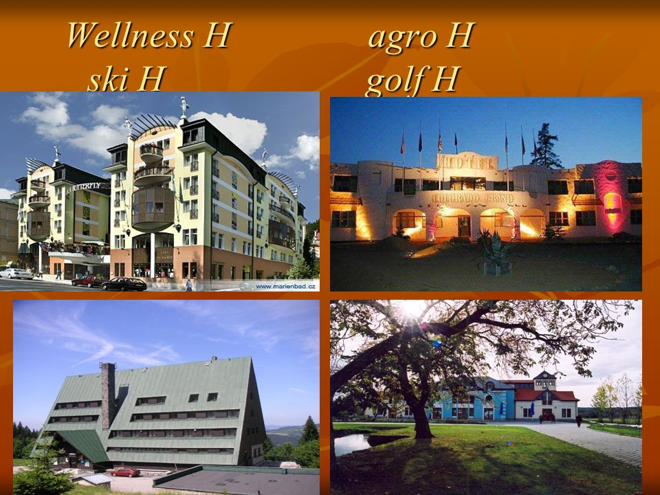 Wellness H agro H ski H golf H