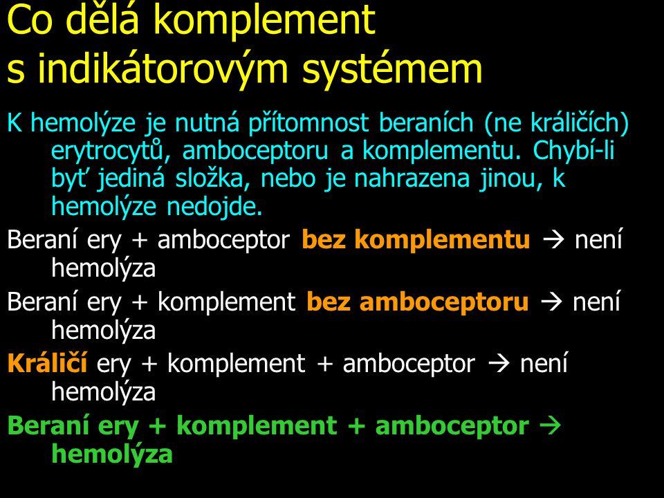 Co dělá komplement s indikátorovým systémem K hemolýze je nutná přítomnost beraních (ne králičích) erytrocytů, amboceptoru a komplementu. Chybí-li byť