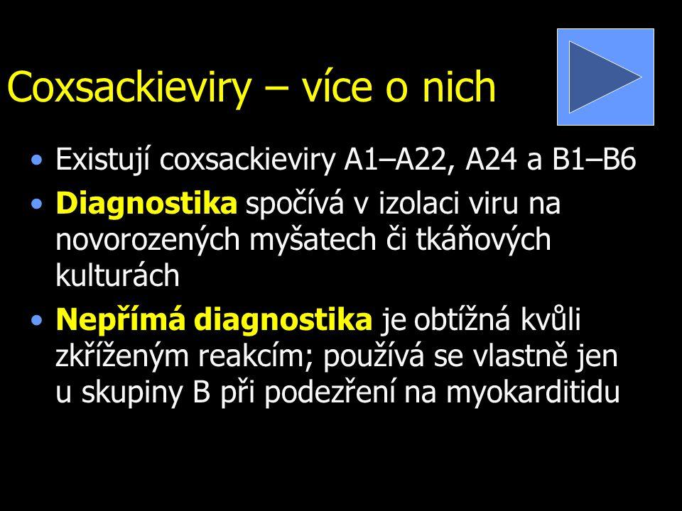 Coxsackieviry – více o nich Existují coxsackieviry A1–A22, A24 a B1–B6 Diagnostika spočívá v izolaci viru na novorozených myšatech či tkáňových kultur