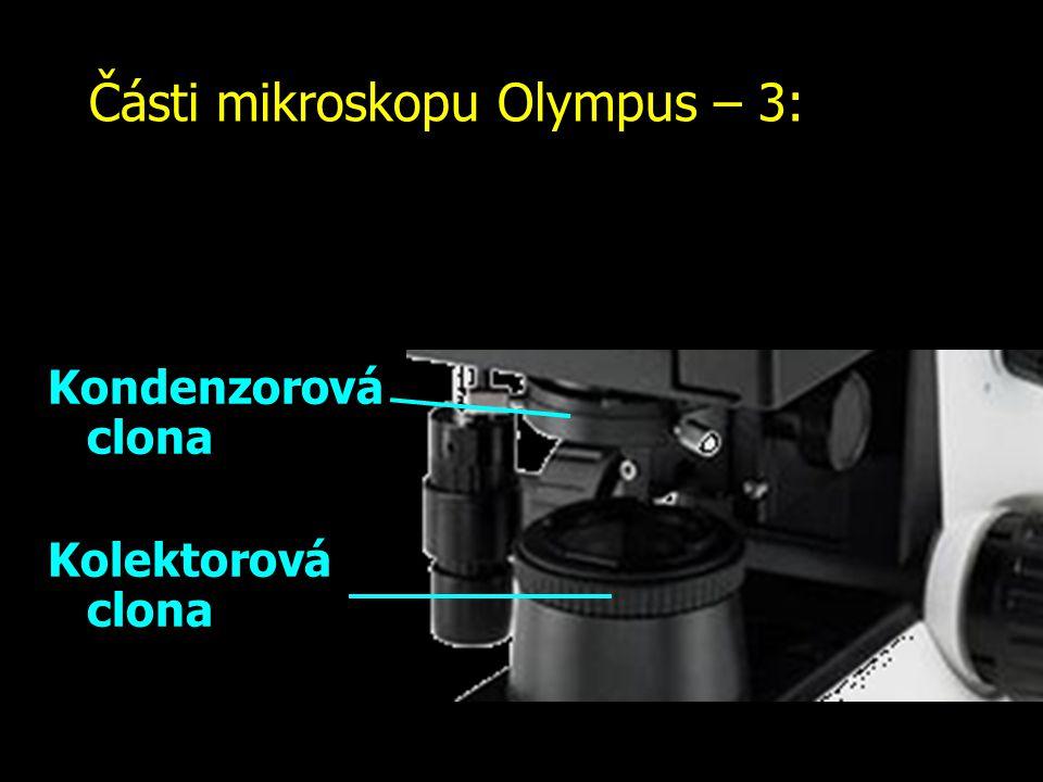 Části mikroskopu Olympus – 3: Kolektorová a kondenzorová clona: čím více zvětšuje objektiv, tím více světla potřebujete.