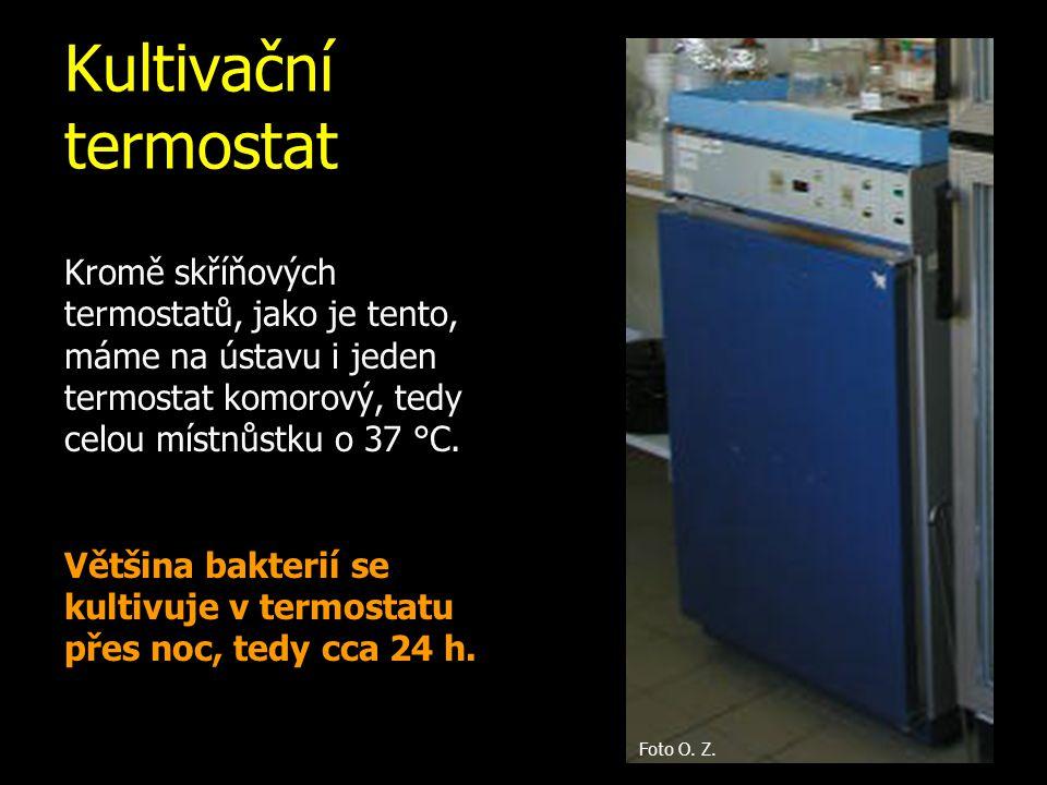 Kultivační termostat Kromě skříňových termostatů, jako je tento, máme na ústavu i jeden termostat komorový, tedy celou místnůstku o 37 °C. Většina bak
