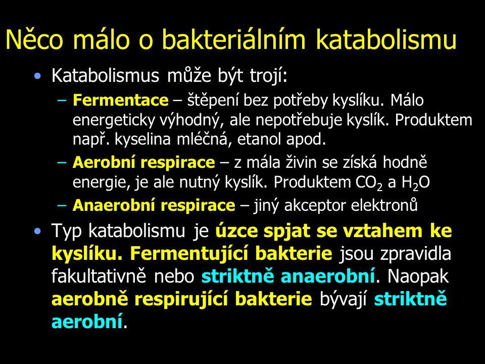 Něco málo o bakteriálním katabolismu Katabolismus může být trojí: –Fermentace – štěpení bez potřeby kyslíku. Málo energeticky výhodný, ale nepotřebuje