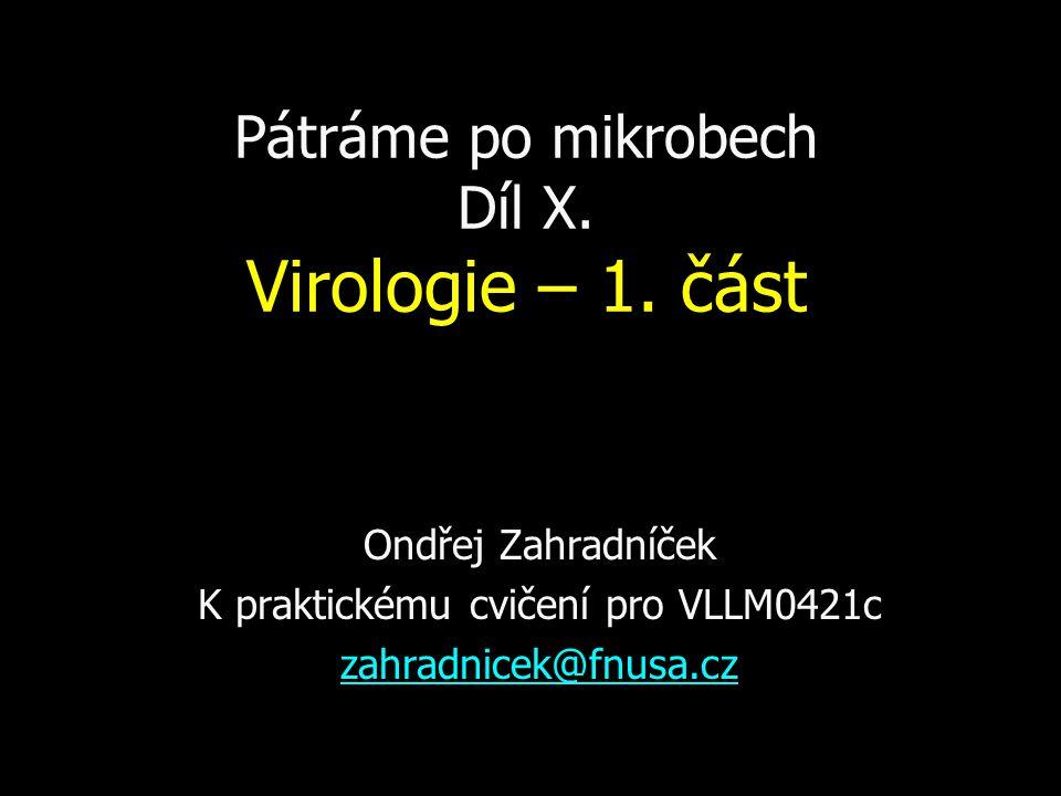 Pátráme po mikrobech Díl X.Virologie – 1.