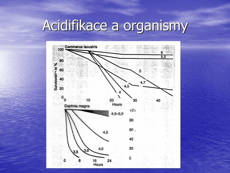 Acidifikace a organismy