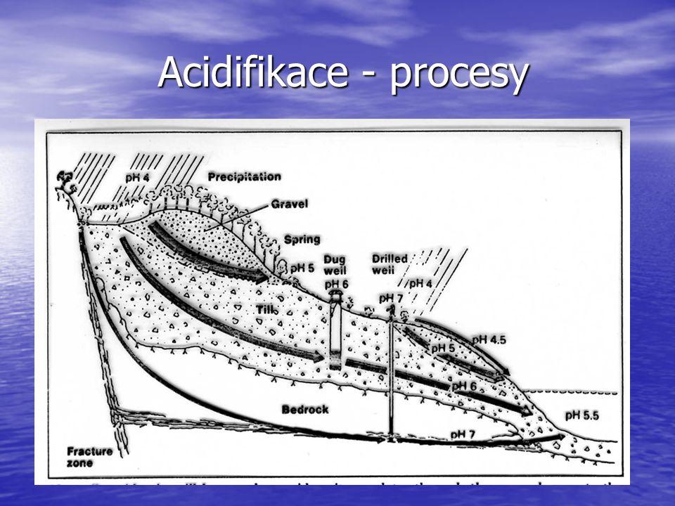 Acidifikace - procesy