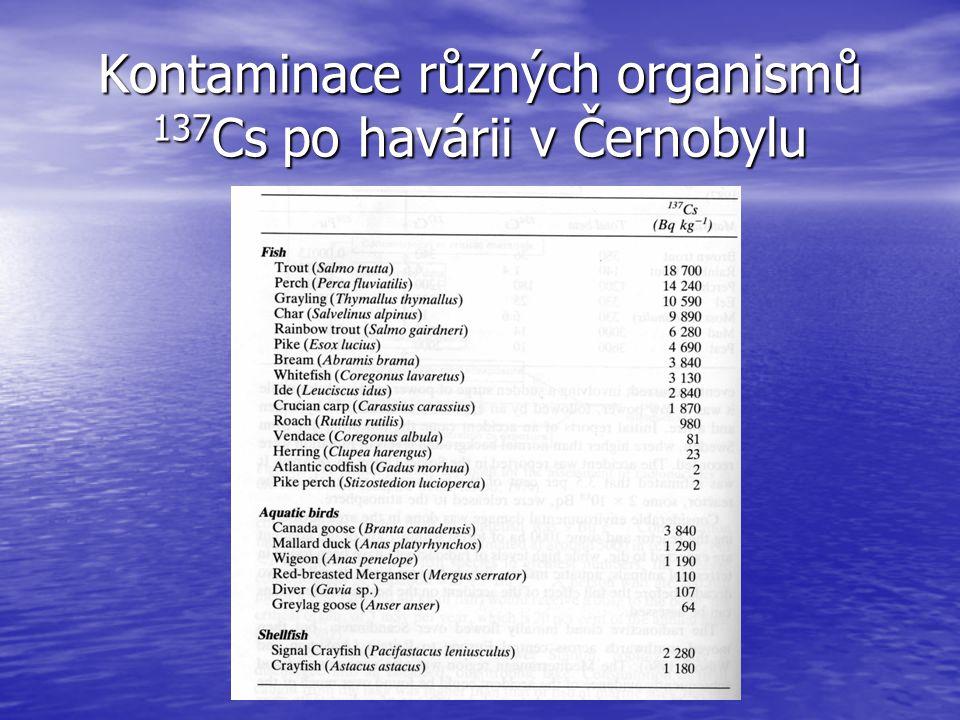 Kontaminace různých organismů 137 Cs po havárii v Černobylu