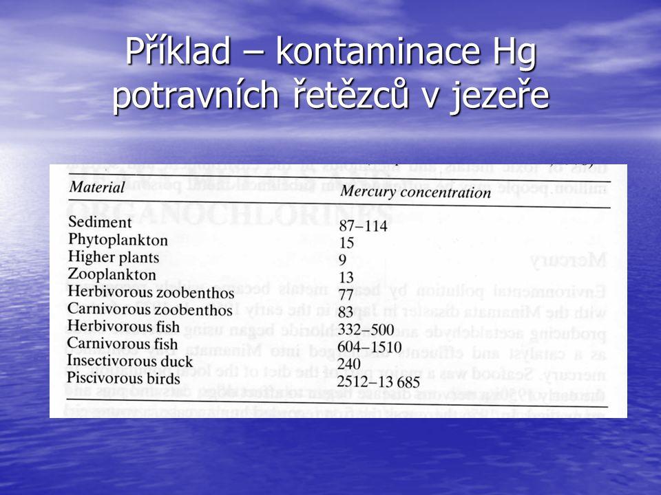Příklad – kontaminace Hg potravních řetězců v jezeře