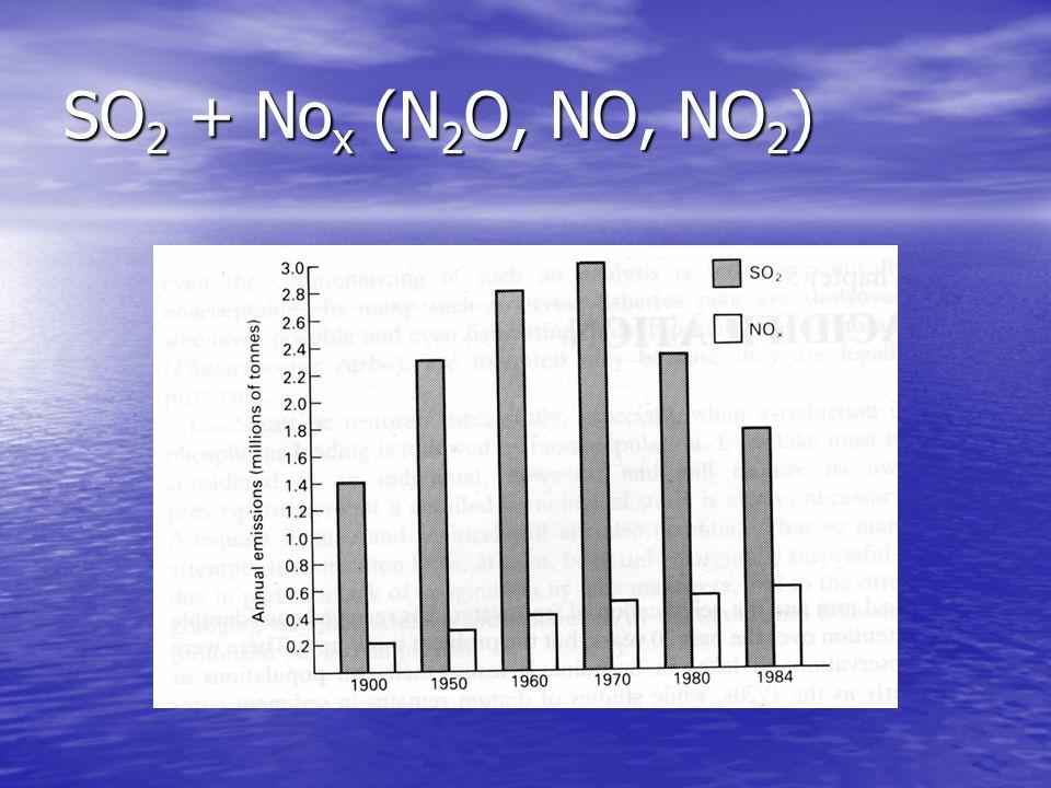 SO 2 + No x (N 2 O, NO, NO 2 )