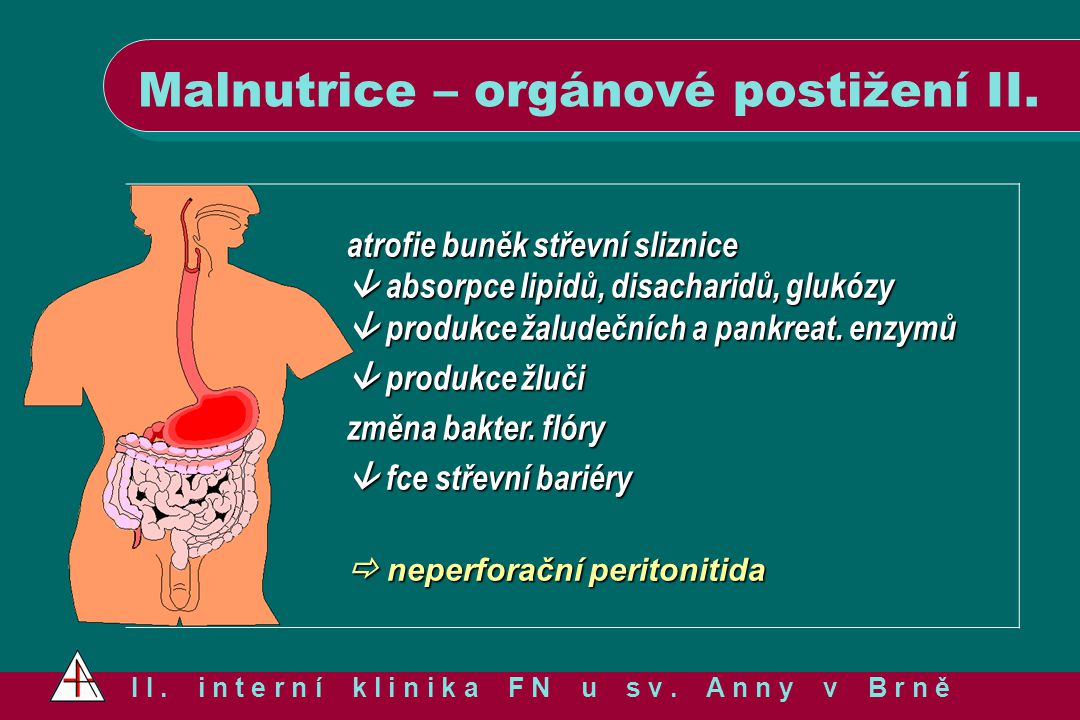 Malnutrice – orgánové postižení II. I I. i n t e r n í k l i n i k a F N u s v. A n n y v B r n ě atrofie buněk střevní sliznice  absorpce lipidů, di