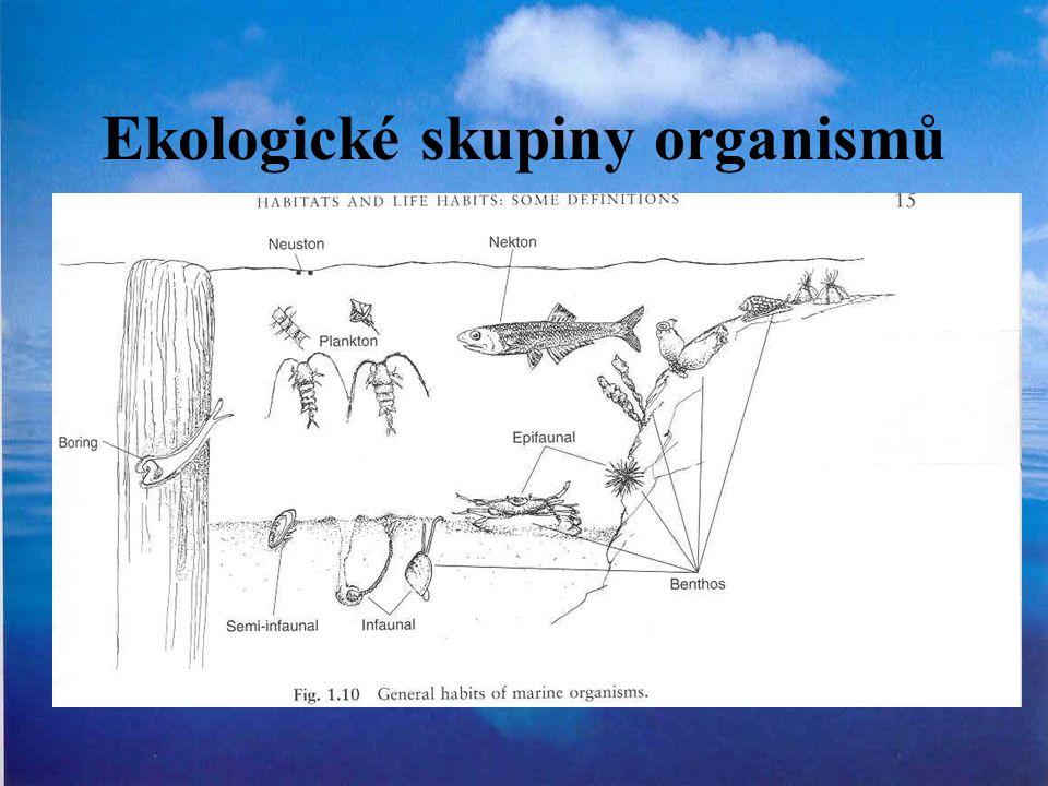 Ekologické skupiny organismů