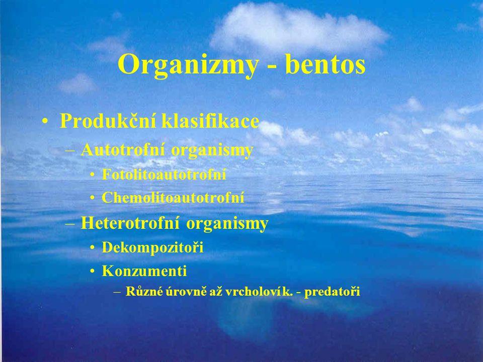 Organizmy - bentos Produkční klasifikace –Autotrofní organismy Fotolitoautotrofní Chemolitoautotrofní –Heterotrofní organismy Dekompozitoři Konzumenti