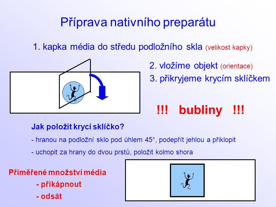 Příprava nativního preparátu 1. kapka média do středu podložního skla (velikost kapky) 3. přikryjeme krycím sklíčkem Jak položit krycí sklíčko? - hran