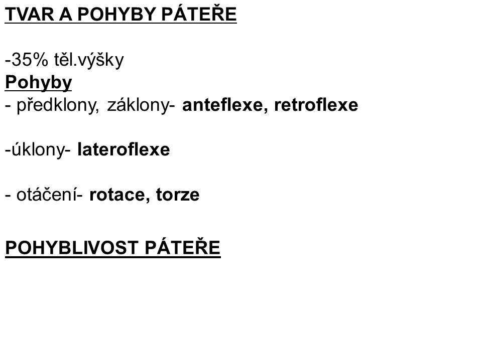 TVAR A POHYBY PÁTEŘE -35% těl.výšky Pohyby - předklony, záklony- anteflexe, retroflexe -úklony- lateroflexe - otáčení- rotace, torze POHYBLIVOST PÁTEŘE