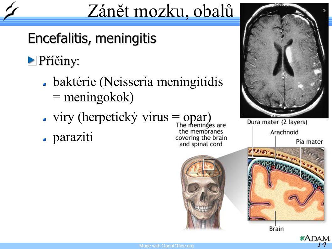 Made with OpenOffice.org 14 Zánět mozku, obalů Encefalitis, meningitis Příčiny: baktérie (Neisseria meningitidis = meningokok) viry (herpetický virus = opar) paraziti