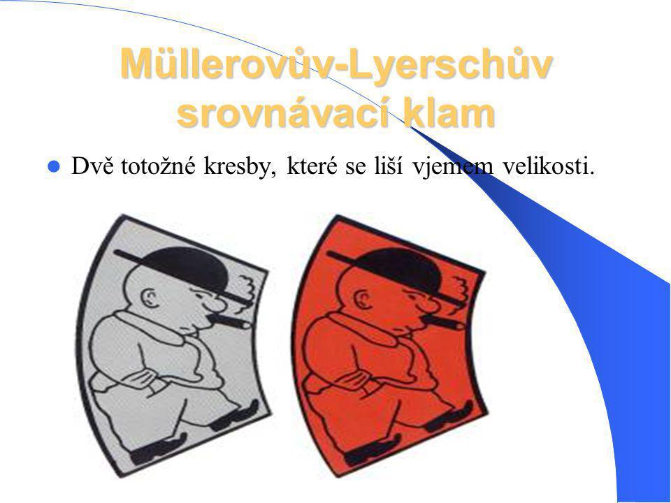 Müllerovův-Lyerschův srovnávací klam Dvě totožné kresby, které se liší vjemem velikosti.