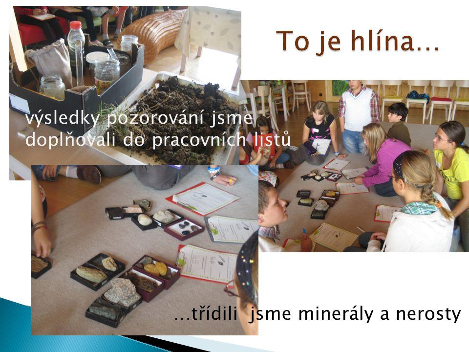…třídili jsme minerály a nerosty výsledky pozorování jsme doplňovali do pracovních listů