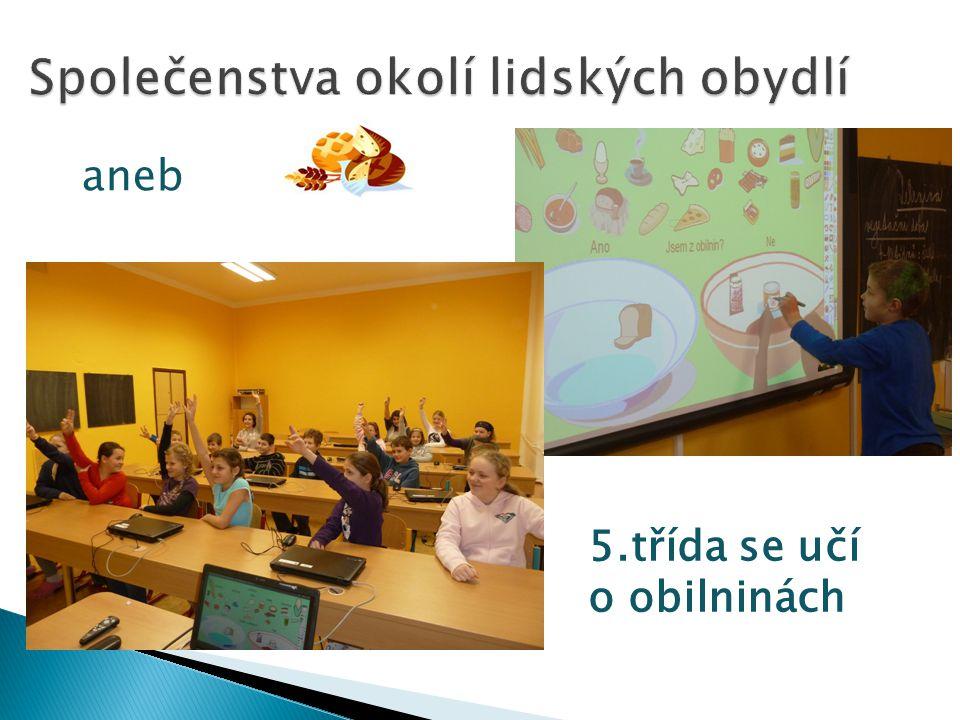 5.třída se učí o obilninách aneb