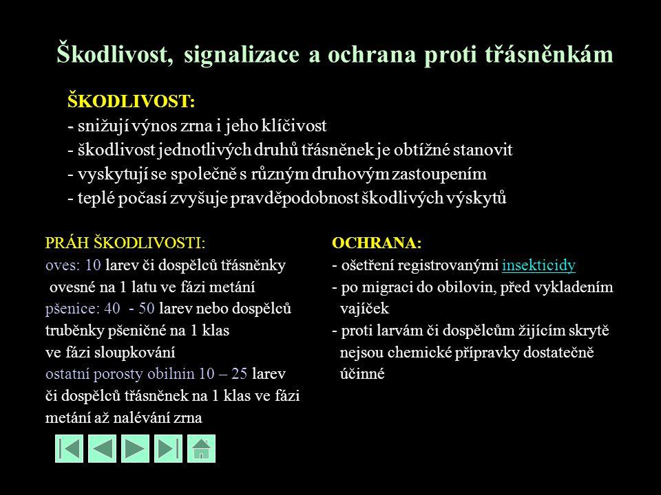 Škodlivost, signalizace a ochrana proti třásněnkám ŠKODLIVOST: - - snižují výnos zrna i jeho klíčivost - škodlivost jednotlivých druhů třásněnek je obtížné stanovit - vyskytují se společně s různým druhovým zastoupením - teplé počasí zvyšuje pravděpodobnost škodlivých výskytů PRÁH ŠKODLIVOSTI: oves: 10 larev či dospělců třásněnky ovesné na 1 latu ve fázi metání pšenice: 40 - 50 larev nebo dospělců truběnky pšeničné na 1 klas ve fázi sloupkování ostatní porosty obilnin 10 – 25 larev či dospělců třásněnek na 1 klas ve fázi metání až nalévání zrna OCHRANA: - ošetření registrovanými insekticidyinsekticidy - po migraci do obilovin, před vykladením vajíček - proti larvám či dospělcům žijícím skrytě nejsou chemické přípravky dostatečně účinné