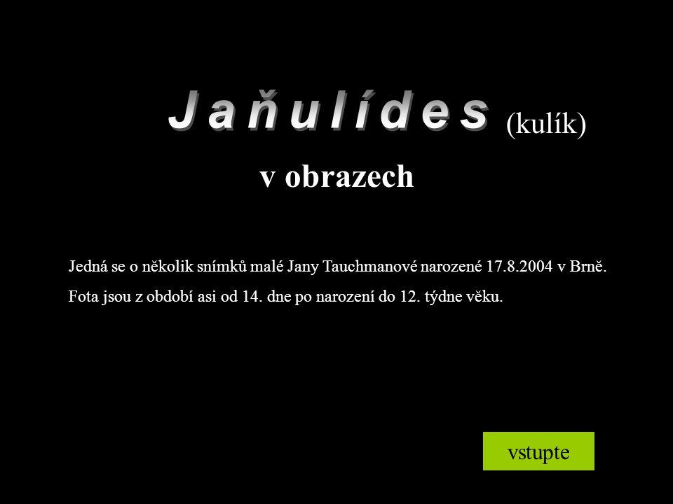 (kulík) v obrazech vstupte Jedná se o několik snímků malé Jany Tauchmanové narozené 17.8.2004 v Brně. Fota jsou z období asi od 14. dne po narození do