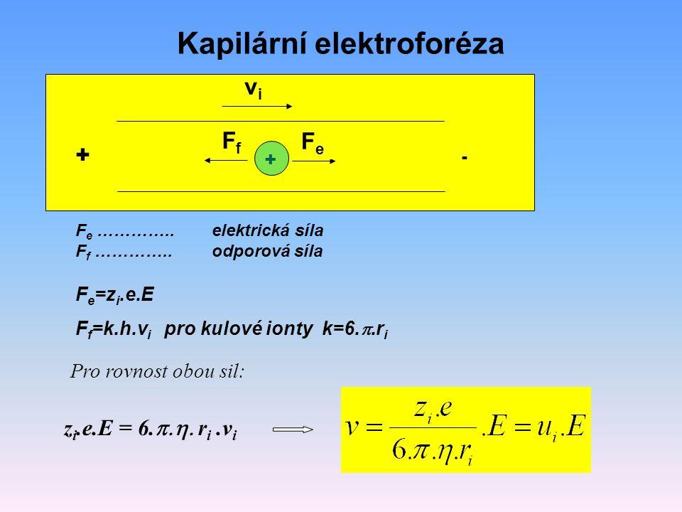 Kapilární elektroforéza F e …………..elektrická síla F f …………..