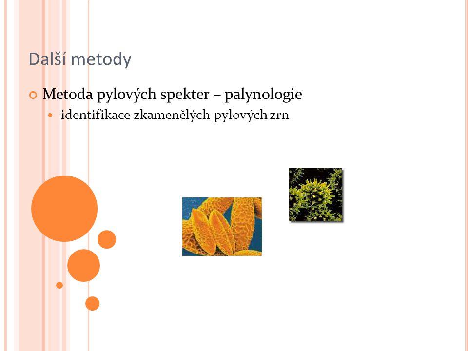 Další metody Metoda pylových spekter – palynologie identifikace zkamenělých pylových zrn
