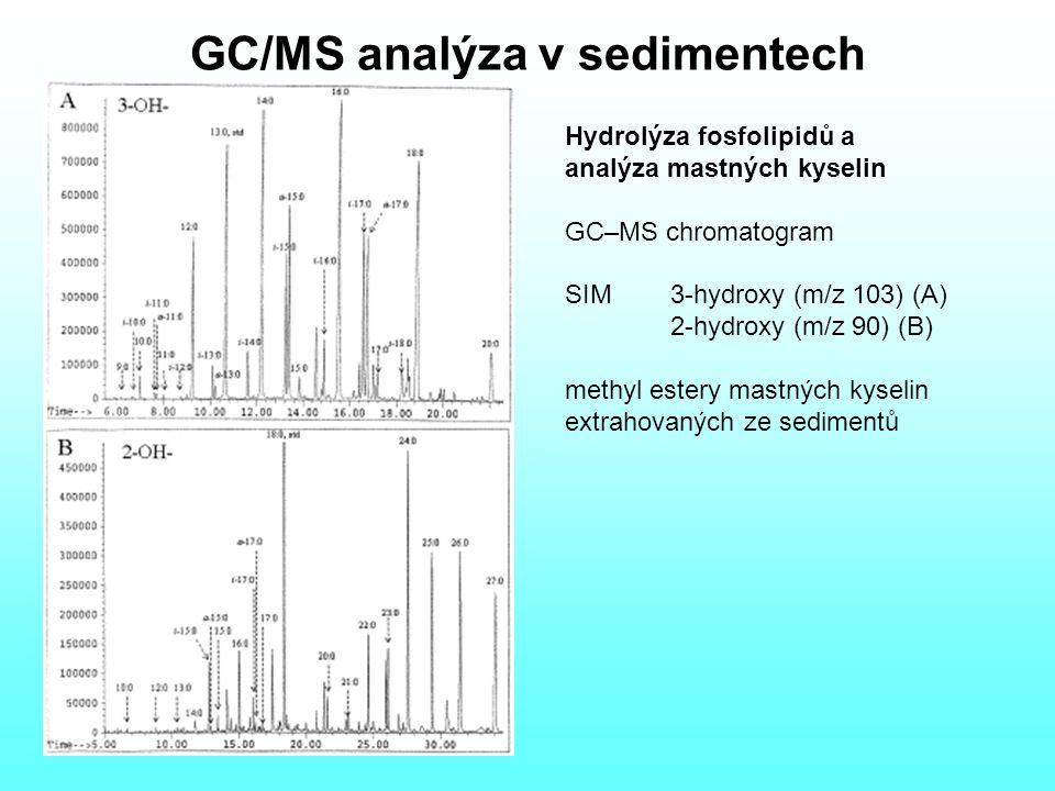 GC/MS analýza v sedimentech Hydrolýza fosfolipidů a analýza mastných kyselin GC–MS chromatogram SIM 3-hydroxy (m/z 103) (A) 2-hydroxy (m/z 90) (B) methyl estery mastných kyselin extrahovaných ze sedimentů