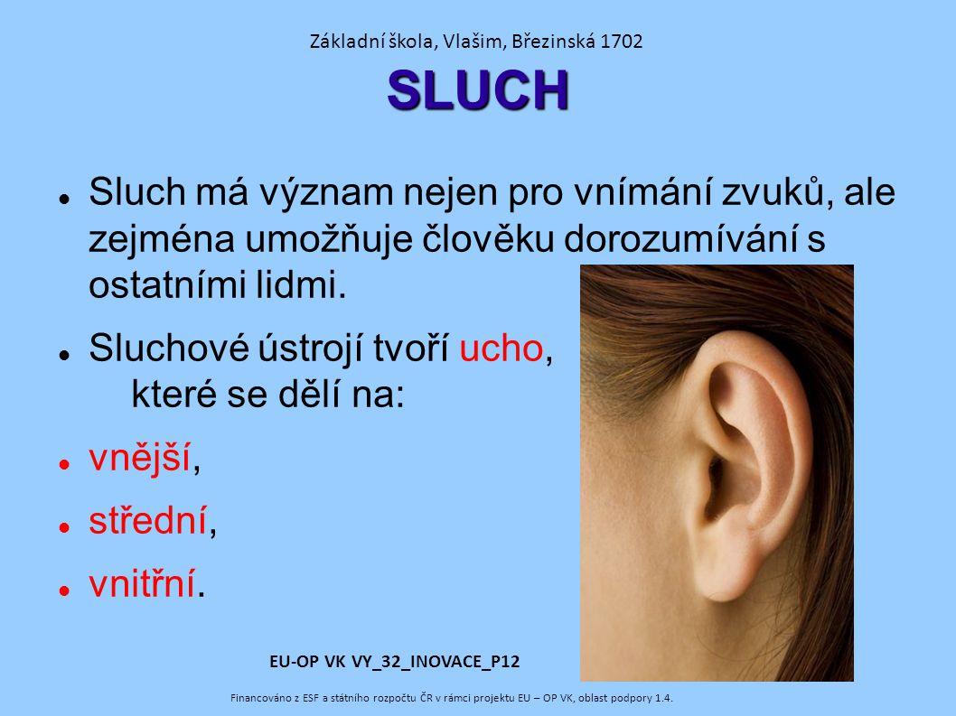 SLUCH Sluch má význam nejen pro vnímání zvuků, ale zejména umožňuje člověku dorozumívání s ostatními lidmi.