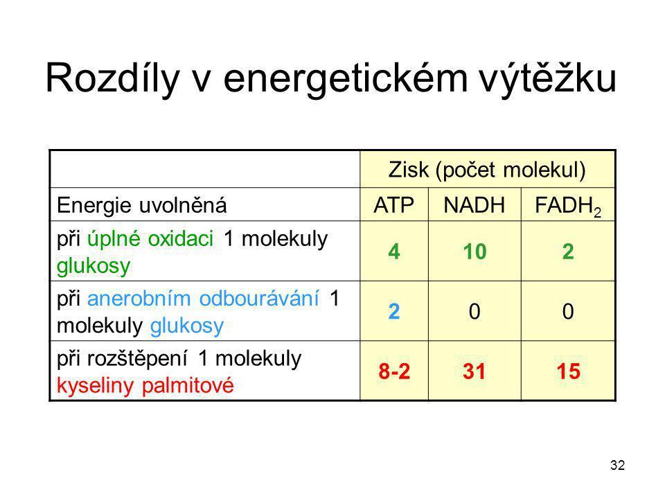 32 Rozdíly v energetickém výtěžku Zisk (počet molekul) Energie uvolněná ATPNADHFADH 2 při úplné oxidaci 1 molekuly glukosy 4102 při anerobním odbouráv
